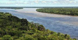 amazon river photo from wikipedia